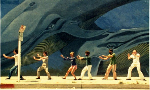 Mural murals